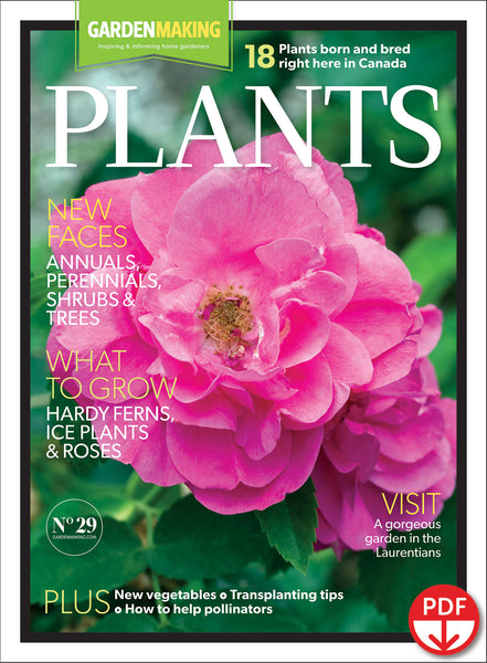 Plants (Issue 29) Spring 2017