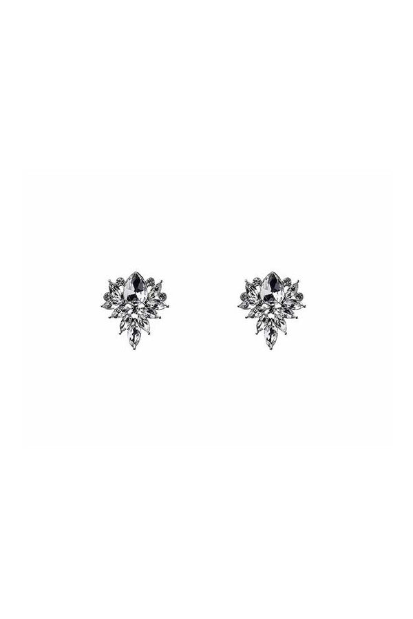 Clear Crystal Cluster Earrings