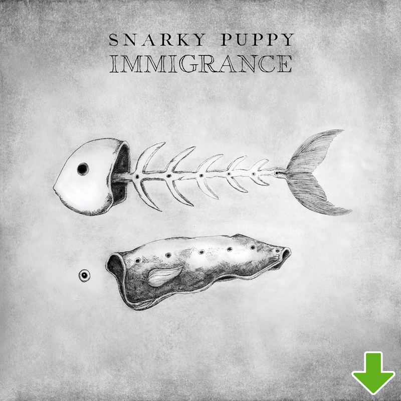 FLAC Downloads - Snarky Puppy Official Online Store