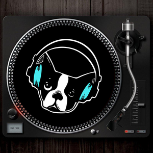 Vinyl Slipmat (Black)