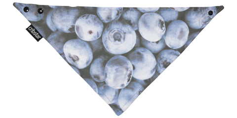 Blueberries Bib