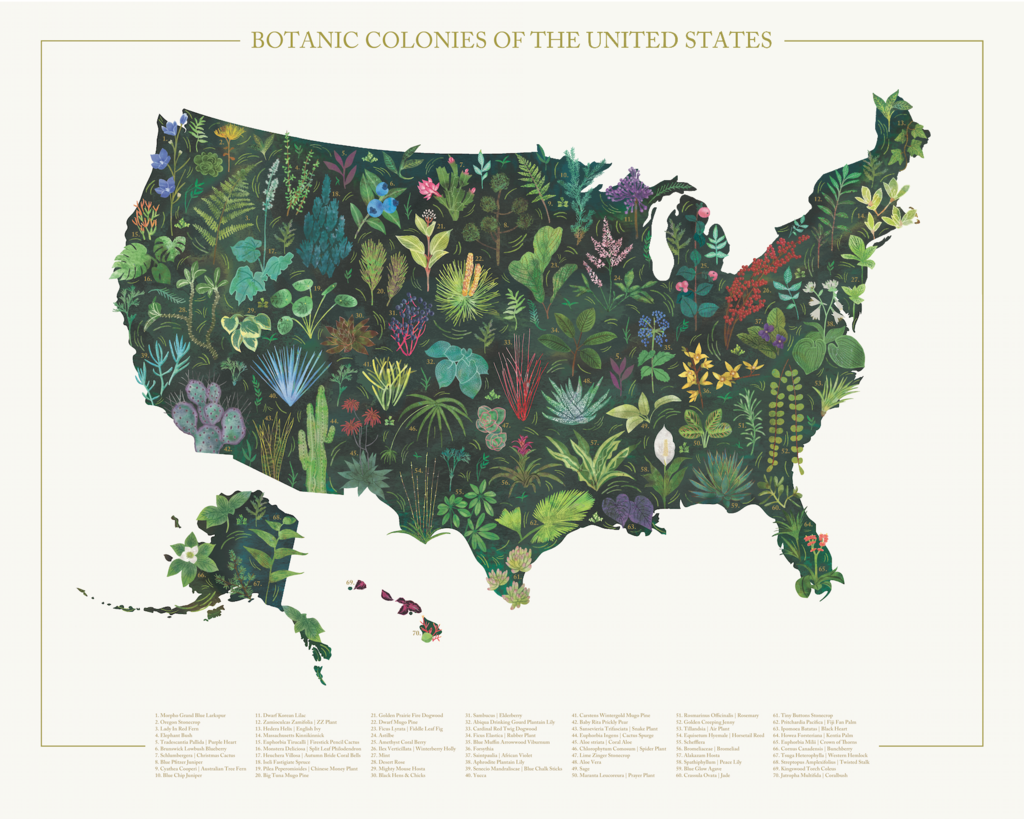 United States - Botanic Colonies