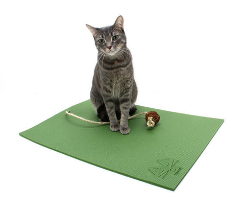 Cat Mat for Yoga Cat Toy: Olive Green
