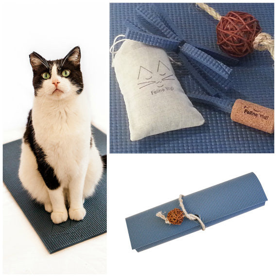 Cat Toy Gift Set: Slate Blue Yoga Cat Mat Toy with Kitty Toy Yoga Props