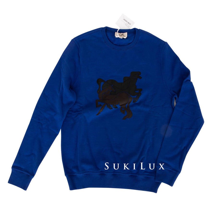Braziliam Horse Sweater
