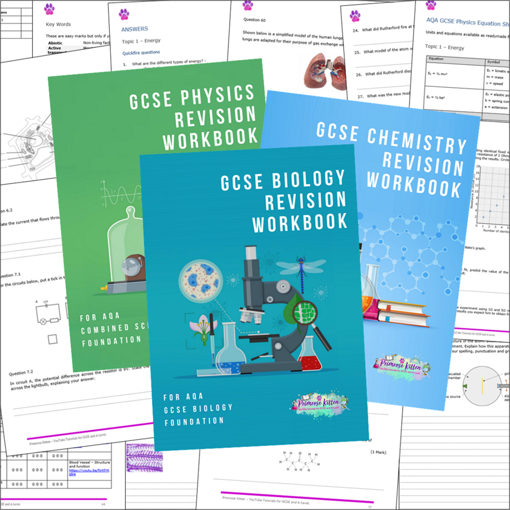 GCSE Science Workbooks
