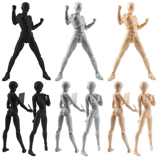 BODY KUN / BODY CHAN Figure Drawing Models -