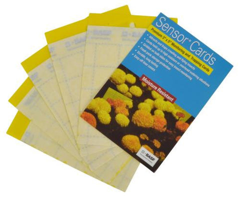 Sensor Yellow Pest Monitoring Trapping Cards