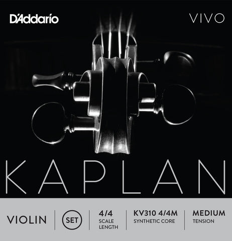 Kaplan Vivo Violin Set KV310