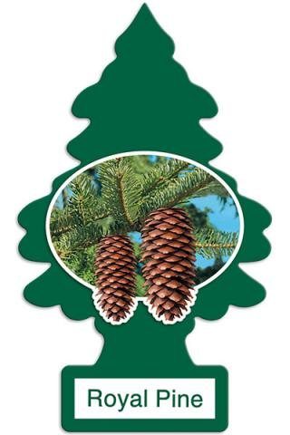Little Trees Royal Pine one-pack (24 Count)