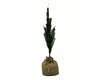"Birch Maison Decorative Primitive / Farmhouse PVC Feather Tree In Burlap Sack Bag - 18"" Tall"