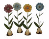 "Birch Maison Decorative Primitive / Farmhouse Tin Spring Flowers on a Stick with Base, Blue / Red / Off-White / Yellow, Assorted, Set of 4, - 15"" Tall"