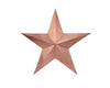 "11"" ROSE GOLD STAR  Craft Outlet"