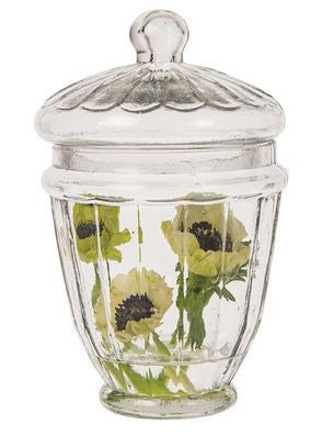 Glass Apothecary Jar (Small Caraway design)-Jubilee Favors
