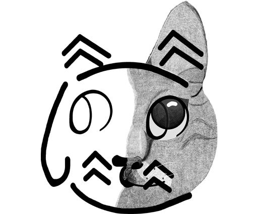 Cute cat face with Hiragana  (の, て, へ, に)