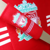 Liverpool seat belt covers
