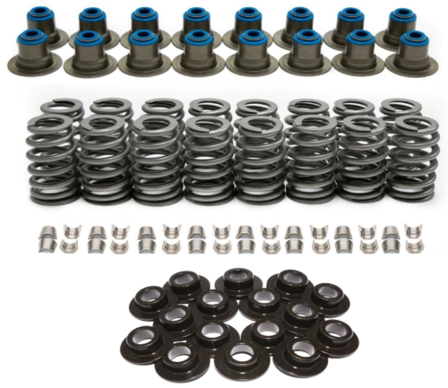 "AMS Racing .560"" Lift Value Valve Springs Kit for GM Gen III IV 4.8 5.3 6.0 Engines"
