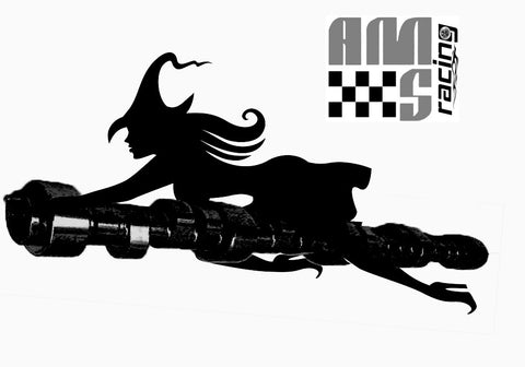 AMS RACING STAGE I NECROMANCER CAMSHAFT CHOPPY IDLE GM LS LS1 4.8 5.3 5.7 6.0