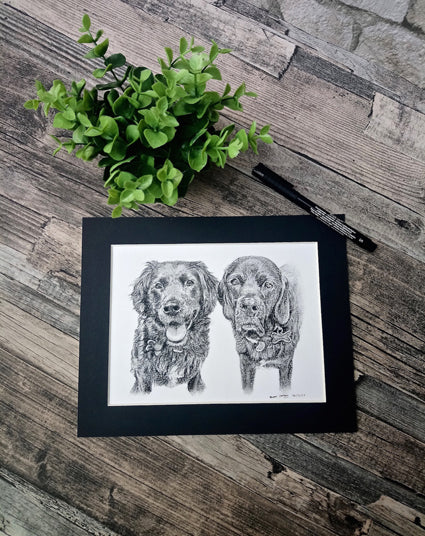 Charcoal Portrait of Buzz and Dory the Black Labradors - From Start to Finish