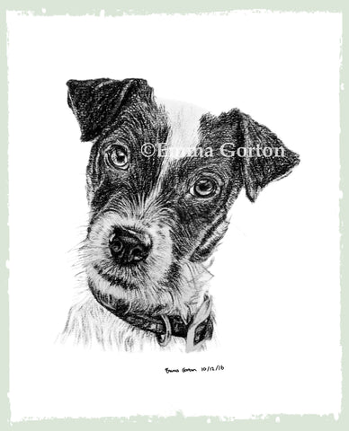 charcoal-portrait-jack-russell