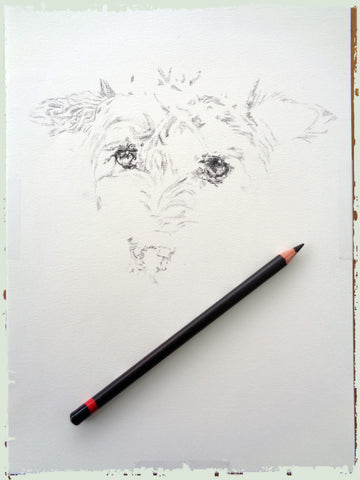 charcoal-portrait-terrier-2