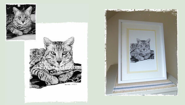 cat-portraits-chelt