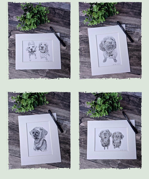 charcoal-pet-portrait-sketches