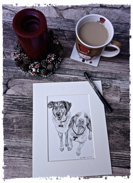 charcoal-portrait-basset-hound-border-collie-11