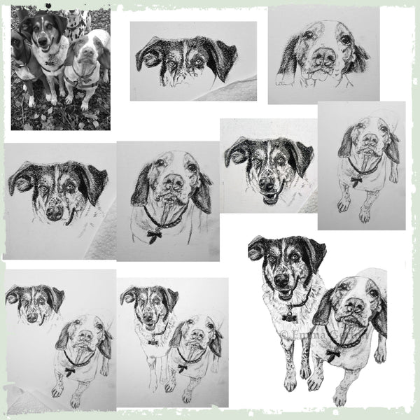 charcoal-portrait-basset-hound-border-collie-1