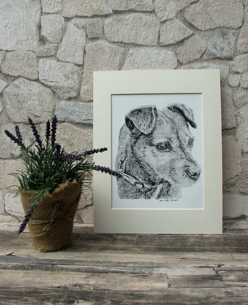 charcoal-portrait-border-terrier-3
