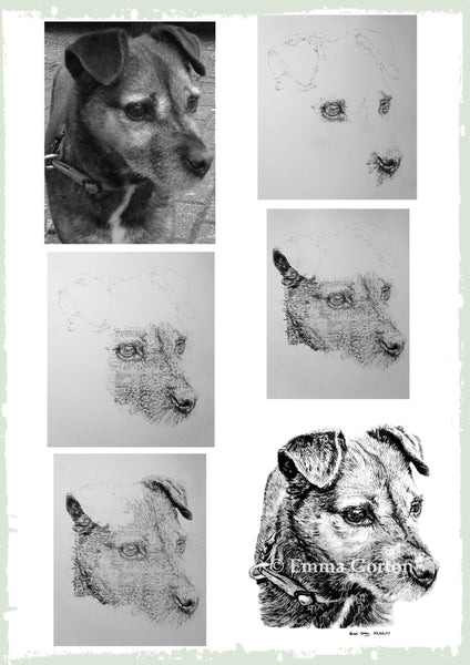 charcoal-portrait-border-terrier