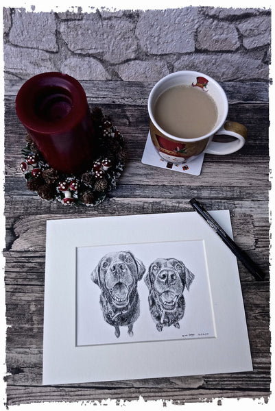 charcoal-portrait-labrador-bella-and-tess-2