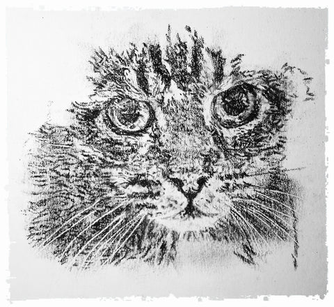 charcoal-portrait-mickey-cat-3