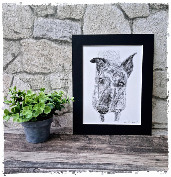charcoal-portrait-mollie-greyhound-3