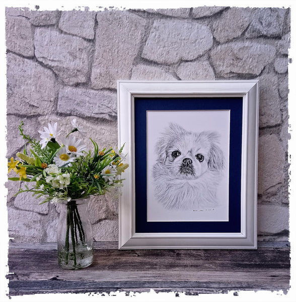 charcoal-portrait-small-dog-maple-2