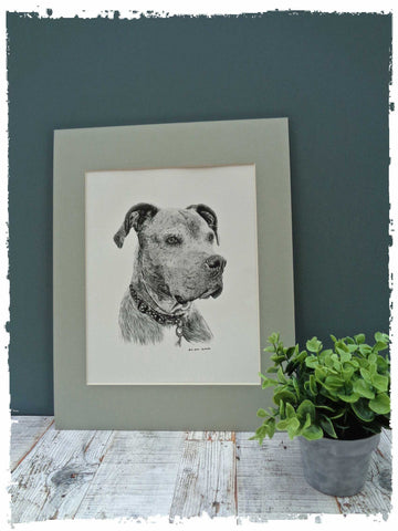 custom-pet-drawings-3
