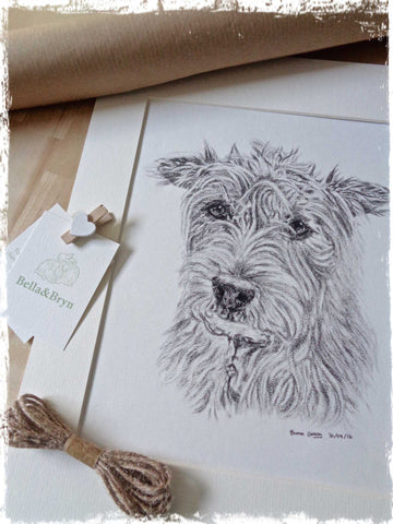 custom-pet-drawings-glos