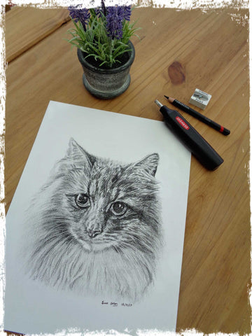 custom-pet-drawings