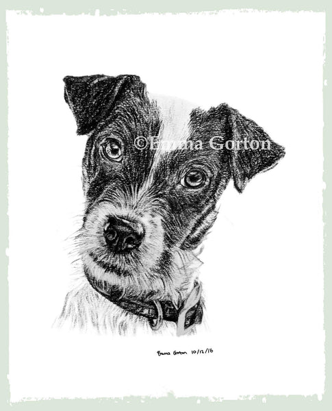 personalised-pet-drawings-2