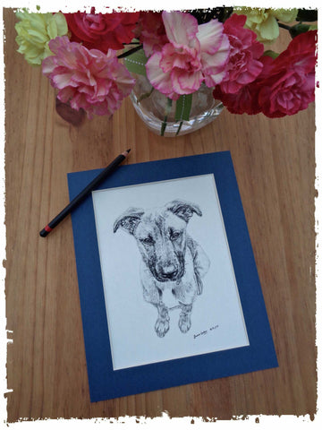 personalised-pet-gifts-cotswolds