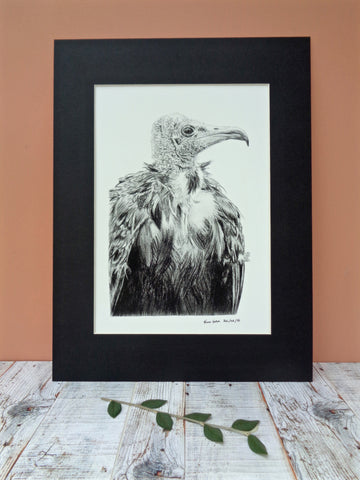 Large Vulture Giclee Print