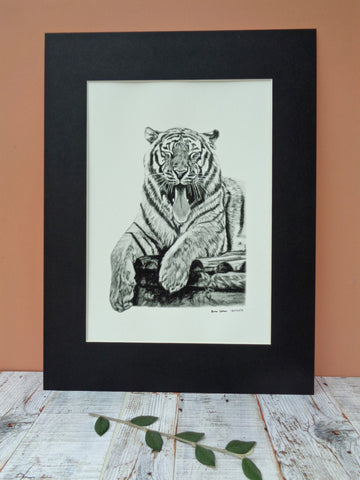 Large Tiger Giclee Print