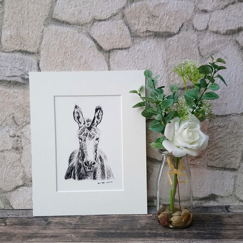 Dominic The Donkey Giclee Art Print - Bella & Bryn