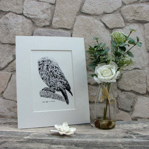 Little Owl Giclee Art Print