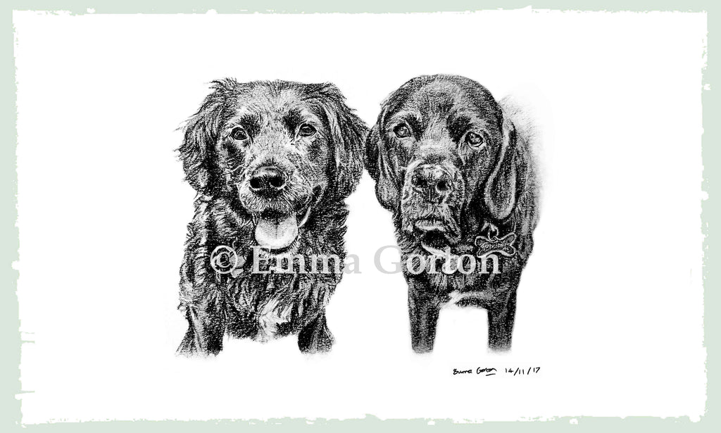 pet-portraits-cotswolds-2
