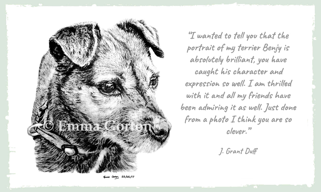 testimonial-pet-portraits