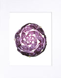 "Red Cabbage 8""x10"" matted print"