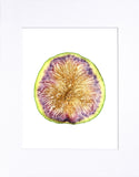 "White Fig 8""x10"" matted print"