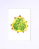 "Kiwano Horned Melon 5""x7"" matted print"
