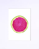 "Watermelon Radish 5""x7"" matted print"